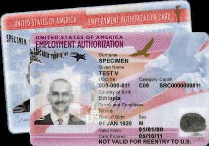 Employment Authorization